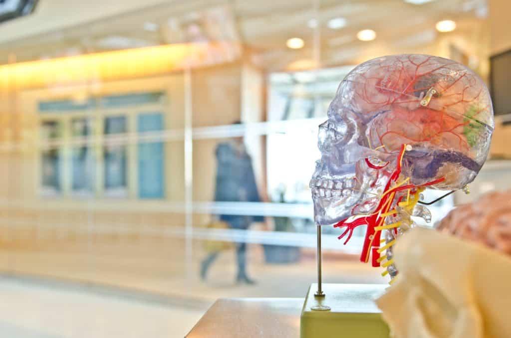 Formation en ligne à la certification de la classe de tutorat du cours Best Physiology